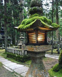 Japan's largest sacred cemetery Okunoin in the forest of Mt. Koya #okunoin #mountkoya #japan #temple #cemetery #mountain #lantern #travel #explore #adventure #wanderlust #world #worldtraveler #asia
