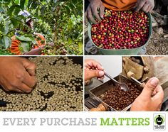 It takes many hands to make your cup of coffee. Do you support them by choosing Fair Trade?