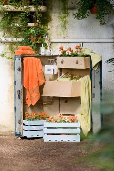 Color en el hogar Wardrobe Rack, Store, Spring, Furniture, Home Decor, Home, Colors, Decoration Home, Room Decor