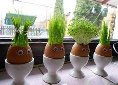 Aprovecha las cáscaras de huevo como semillero y de paso, decoración