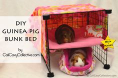 How to Build a Guinea Pig Bunk Bed - tutorial