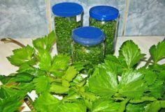 Zeller télire | NOSALTY – receptek képekkel Zeller, Food Storage, Preserves, Spices, Food And Drink, Cooking Recipes, Herbs, Plants, Petra
