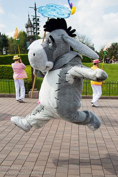 Information about Eeyore (Bourriquet (French)) and pictures of Eeyore including where to meet them and where to see them in parades and shows at the Disney Parks (Walt Disney World, Disneyland, Disneyland Paris, Tokyo Disneyland)