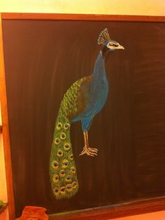Waldorf ~ 1st grade ~ Peacock ~ chalkboard drawing