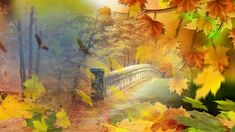 """Beautiful autumn images on a song by Peter Sandberg, titled """"Yellow Leaves. All tradem. Yellow Leaves, Painting, Beautiful, Painting Art, Paintings, Painted Canvas, Drawings"""