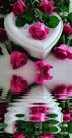 Day imagenes Gif Y Postales - valentinesday Romantic Love Photos, Beautiful Love Images, Good Night Love Images, Love Heart Images, Love You Images, Beautiful Flowers Wallpapers, Beautiful Rose Flowers, Love Flowers, Flower Phone Wallpaper