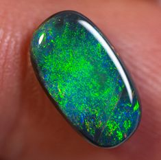 Black Opal No Reserve Auctions 13 x 7 x carats Auction Opal Auctions Lightning Ridge, Rough Opal, Flower Fairies, Black Opal, Opal Auctions, Solid Black, Blue Green, Gemstone Rings, Rings For Men