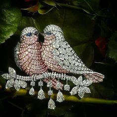 Love Birds brooch via Graff diamonds.