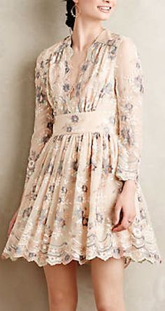 sweet embroidered silk dress