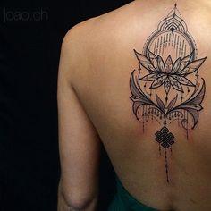 Flor de lotus e o nó budista em linhas.