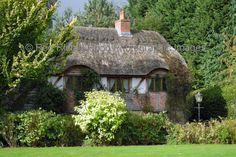 Honeysuckle Cottage                                                                                                                                                                                 More