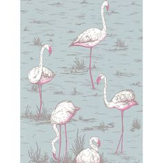 Cole & Son Flamingos Wallpaper  £70 / sq m  johnlewis.com