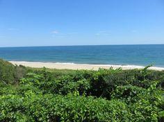 Falling for Nantucket | New York Social Diary