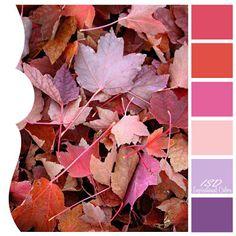 Inspirational Colors by Ilonka's Scrapbook Designs: