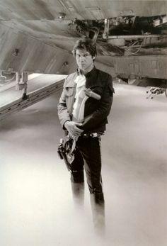 Han Solo - han-solo Photo