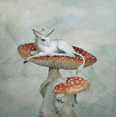Lily Seika Jones - Waking on Toadstools Print Illustrations, Illustration Art, Arte Indie, Fairytale Art, Fairy Art, Cute Art, Art Inspo, Fantasy Art, Fairy Tales