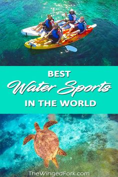 Top water sports destinations around the world to enjoy your holidays with activites such as kayaking, cave diving, snorkelling and wind surfing. Windsurfing, Wakeboarding, Water Sports Activities, Surfing Pictures, Cave Diving, Vintage Surf, Snorkelling, World Of Sports, Aktiv