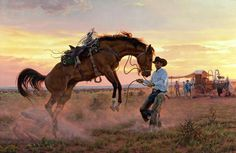 Attempting to Settle Down a Bucking Horse.