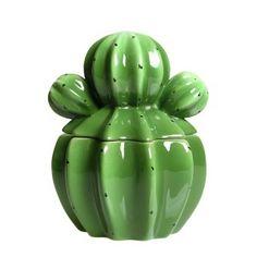 Pot cactus small