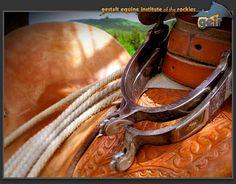 Gestalt Equine Psychotherapy(GEP)™ Training Program   #equine #horse #horselover http://globalhorsecents.com