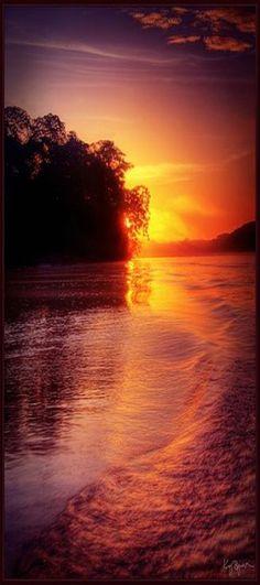Sunrise in Amazonas, Tambopata, Madre de Dios_ Peru