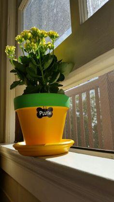 Disney's Pluto flower pot Flower Pot Art, Flower Pot Crafts, Painted Plant Pots, Painted Flower Pots, Disney Diy, Disney Crafts, Disney Wreath, Disney Garden, Decorated Flower Pots