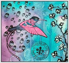 by Karin, Hummingbird and Waterdroplets by Designs by Ryn