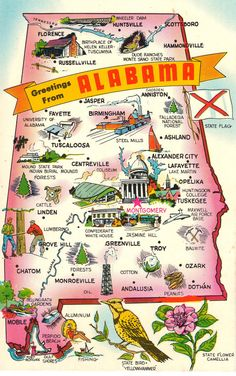 Greetings From Alabama - Vintage Postcard State Maps