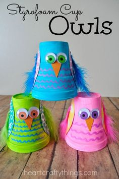 Turn small Styrofoam cups into a cute and colorful Owl Kids Craft. http://www.kidsaversnetwork.com/