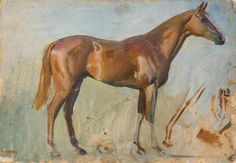 Study of a Chestnut Horse  by Alfred James Munnings