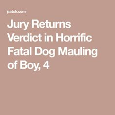 Jury Returns Verdict in Horrific Fatal Dog Mauling of Boy, 4