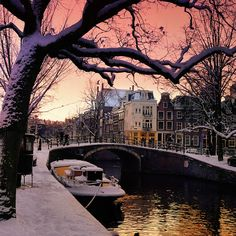 Twinkling winter light dangle over the canals of Amsterdam by B℮n, via Flickr