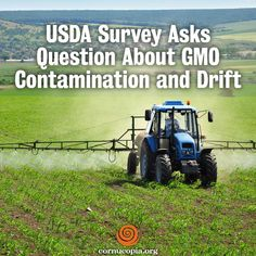 The USDA's National Agricultural Statistical Service (NASS) is completing its USDA Organic Survey. http://www.cornucopia.org/2015/03/usda-survey-asks-question-about-gmo-contamination-and-drift/ #GMOs #contamination #farmers #food #righttoknow