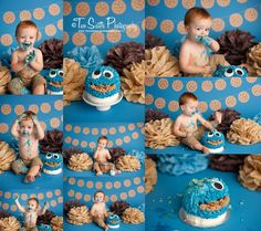 Cookie monster cake smash session, first birthday cake smash, sesame street cake smash  Two Sisters Photography, Bonney Lake, WA