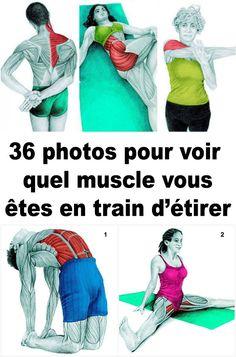 Étirements musculaire