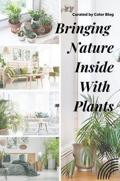 Bring nature inside your home with plants. Outdoors inside trend Informations About Bring nature inside your home with plants. Nature Decor, Nature Plants, Thermal Hotel, Faux Plants, Elle Decor, Home Accents, Accent Decor, Luxury Homes, Bring It On