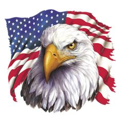 American Eagle Flag T-Shirt