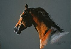 A simple soft pastel drawing of a horse for having nice time #horse