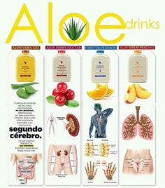 Forever Aloe Vera Gel® is as close to the real thing as you can get. Forever Aloe, Aloe Vera Gel Forever, Forever Living Aloe Vera, Aloe Vera Juice Drink, Aloe Drink, Aloe Barbadensis Miller, Forever Living Products, Forever France, Forever Freedom