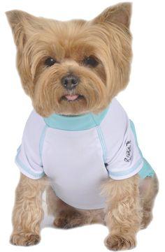 Max's Closet SG Rashguard Dog Apparel *** To view further, visit now : Dog Shirts