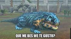 Resultado de imagen para lagartijas babosas meme Stupid Images, Dankest Memes, Funny Memes, Funny V, Kimi No Na Wa, Spanish Memes, Meme Faces, Reaction Pictures, Cool Pictures