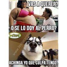 42 Ideas memes mexicanos mamones de gorditos for 2019 Spanish Jokes, Funny Spanish Memes, Funny Memes, Hilarious, Funny Sayings, Funny Shit, Dankest Memes, Mexican Problems, Mexican Memes
