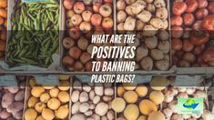 Are plastic bag bans really worth the effort? We decided to find out and look into the positives of banning plastic bags. See what we found out! #GoReusableNow #BagBan #GoGreen