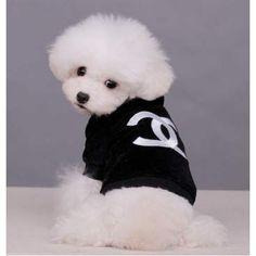Chanel Velvet hoodie just saying