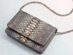 Chanel Python Wallet on Chain Bag