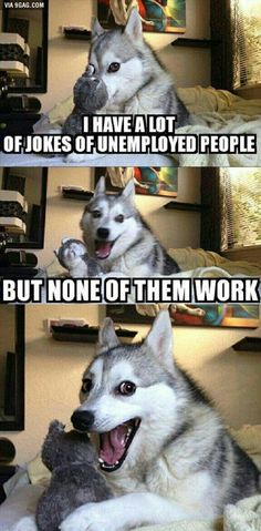 Lol the dog's face at the end!
