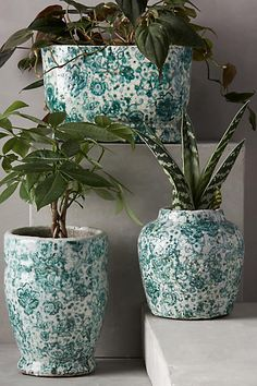 Wafture Planter - anthropologie.com