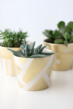 Gilded succulent pots- 18 Amazing DIY Spring Home Decor Projects Diy Décoration, Easy Diy, Diy Crafts, Leaf Crafts, Succulent Pots, Succulents Diy, Terrarium, New Years Eve Decorations, Gold Diy