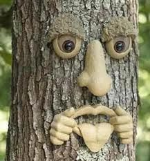 Forest Faces forest faces are horrible little pieces you can tack into trees to Garden Trees, Garden Art, Garden Design, Tree Sculpture, Garden Sculpture, Tree People, Tree Faces, Tree Carving, Concrete Art