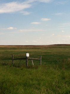 Wide open spaces ... grassland near Mott, North Dakota ...